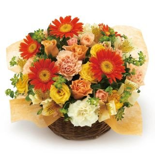 Yellow and Orange Arrangement